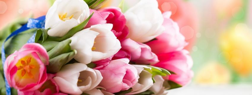 Servicios Florales